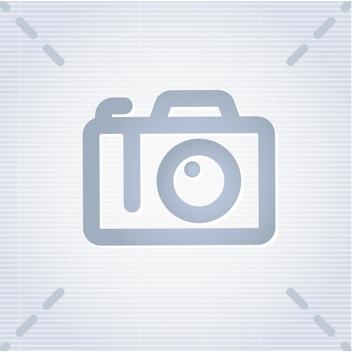 Редуктор газовый ГАЗель (бизнес) ЕВРО-4 купить OMVL K901401 цена